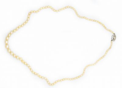 Contemporary Cultured Pearl Necklace GIA Report 6204746283